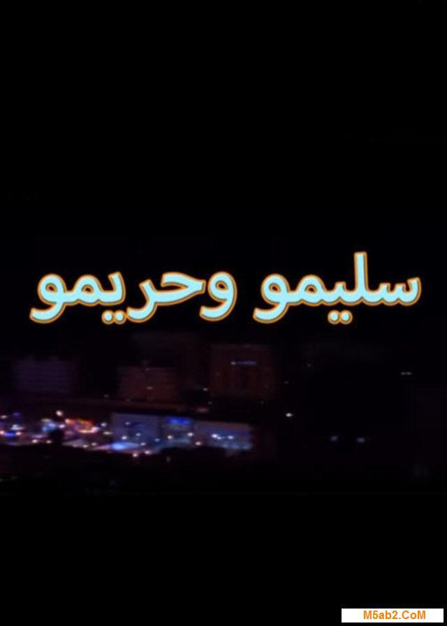قصة مسلسل سليمو وحريمو  - مراجعة سليمو وحريمو رمضان 2016