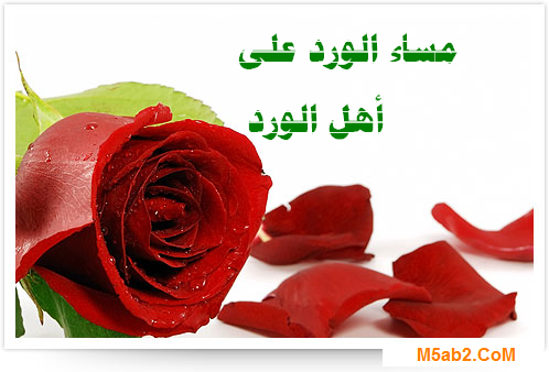 صور مساء الخير جميلة 2017 - اجمل و احلى صور بطاقات و كروت عبارات مساء الخير 2017