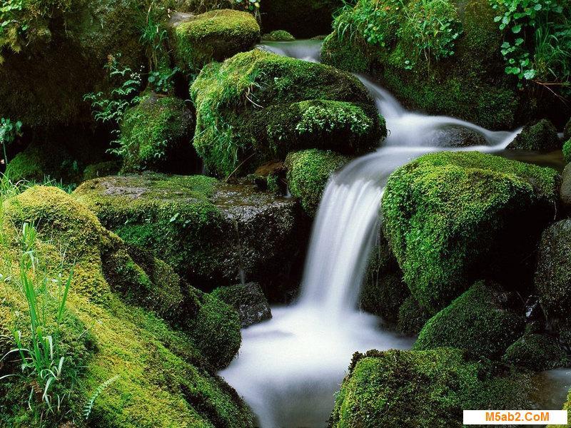 مياه تتدفق من الارض من 3 حروف - حل لغز مياه تتدفق من الارض